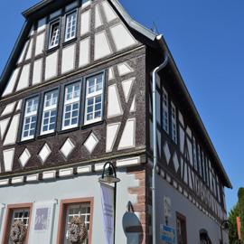 Altstadt-Juwel - Großzügige Wohnung